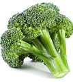 Healty-Green-Broccoli-green-34594037-892-1000